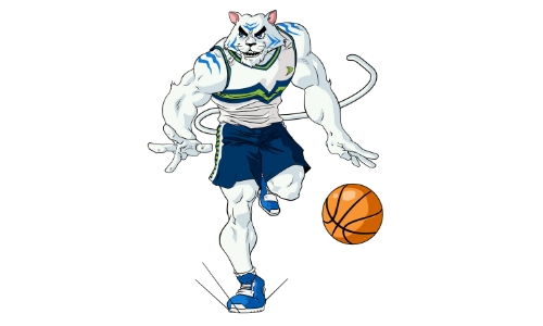 colegio-williams-final-basquetbol-2018-2019-willy