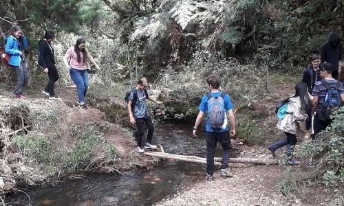 alumnos-realizan-viaje-colombia-programa-cas-4