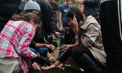 alumnos-realizan-viaje-colombia-programa-cas