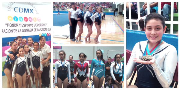 colegio-williams-seleccion-gimnasia-artistica.png