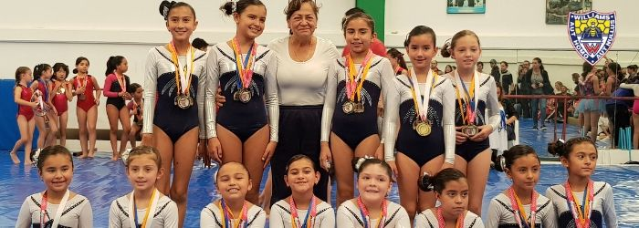 medallas-oro-plata-seleccion-gimnasia-3