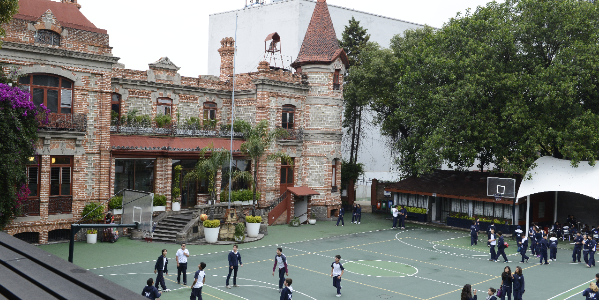 ¿Por qué el Colegio Williams es una de las mejores escuelas primarias privadas en la CDMX?